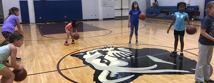 grade 2 basketball program